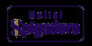 molini spigadoro cliente hexa
